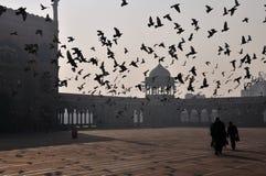 Früher Morgen an Jama Masjid Stockfoto