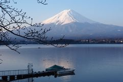 Früher Morgen am Kawaguchiko See, der Fujisan-Ansicht, Japan lizenzfreie stockfotografie