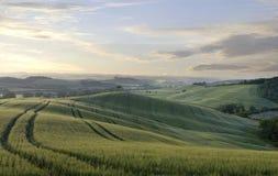 Früher Morgen in ländlicher Toskana Lizenzfreie Stockbilder