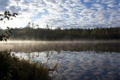 Früher Morgen-Landschaft Stockbild