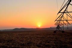 Früher Morgen-Landwirtschaft 1 Stockfoto