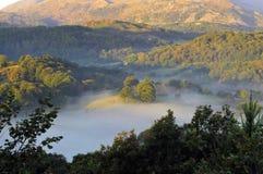 Früher Morgen-Nebel über dem Tal stockfotografie