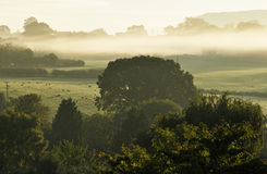 Früher Morgen-Nebel Lizenzfreies Stockbild