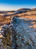 Früher Morgenspaziergang im Pentlands Stockfoto