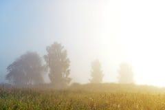 Früher nebelhafter Morgen im Dorf Stockbild