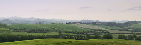 Früher nebeliger Morgen in ländlicher Toskana Stockfotos