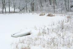 Früher Schnee Lizenzfreies Stockfoto