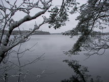 Früher Schnee auf karelischem Isthmus Stockbild