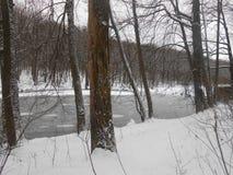 Früher Winter Teich im Wald Lizenzfreies Stockfoto