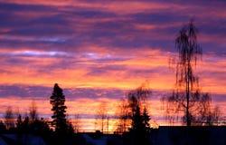 Früher Wintermorgen des Sonnenaufgangs Lizenzfreies Stockfoto