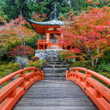Frühherbst an Daigoji-Tempel in Kyoto Stockfoto