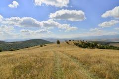 Frühherbstlandschaft mit Bäumen, Hügeln und Landstraße Lizenzfreie Stockfotos