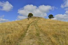 Frühherbstlandschaft mit Hügel, Bäumen und Landstraße Lizenzfreies Stockfoto