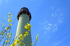 Frühjahr in Cape May Lizenzfreie Stockfotografie