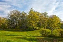 Frühjahr entlang blauen Ridge Parkway in Virginia lizenzfreies stockfoto