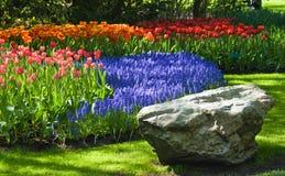 Frühjahr im Park lizenzfreie stockbilder