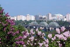 Frühjahr in Kiew stockbilder