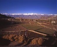 Frühjahr in Leh, Ladakh lizenzfreies stockbild