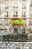 Frühjahr mit roten Pelargonien auf einem Balkon in Paris, Frankreich stockfotos