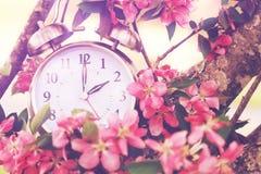 Frühjahr-Nutzung des Tageslichtss-Zeit Lizenzfreies Stockfoto