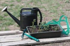 Frühjahr und Gartenarbeit Stockfotografie