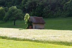 Frühjahr vallley Rasen mit einem Hütten- und Maisfeld Stockfotos