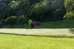Frühjahr vallley Rasen mit einem Hütten- und Maisfeld Stockfotografie
