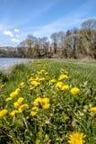 Frühjahransicht mit Ruinen im Hintergrund Stockfotos