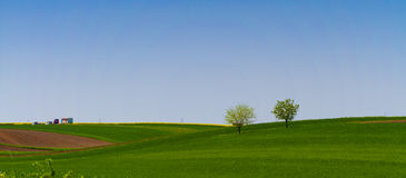 Frühjahrgreenfield Stockfoto