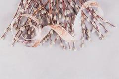 Frühjahrhintergrund mit dem Bündel Pussyweidenzweigen, festgezogen durch Band lizenzfreies stockbild