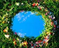 Frühjahrreflexionen Stockbild