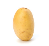 Frühkartoffel stockbild
