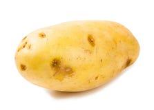 Frühkartoffel getrennt auf weißem Hintergrund Lizenzfreies Stockfoto