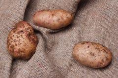 Frühkartoffeln auf Sackleinen auf Holztisch, Draufsicht Lizenzfreies Stockfoto