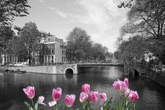 Frühling in Amsterdam Stockfotos