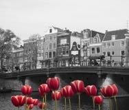 Frühling in Amsterdam Lizenzfreies Stockbild