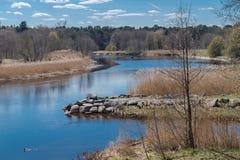 Frühling auf Fluss stockbild