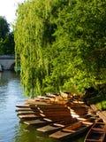 Frühling auf Fluss-Nocken Stockbild