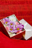 Frühling blüht Blumenstrauß Lizenzfreie Stockbilder