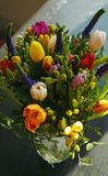 Frühling blüht Blumenstrauß Lizenzfreie Stockfotografie