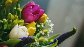Frühling blüht Blumenstrauß - Detail Stockfotografie