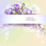 Frühling blüht Einladungsschablonenkarte Stockfoto