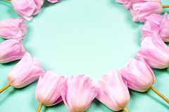 Frühling blüht Fahne - Bündel rosa Tulpenblumen auf Hintergrund des blauen Himmels Stockbild