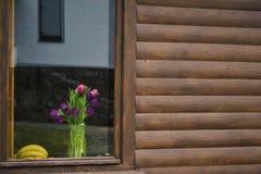 Frühling blüht mehrfarbiges Lizenzfreies Stockfoto