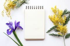 Frühling blüht Mimose und Iris Mockup Beitragsblogsocial media Stockfoto