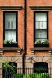 Frühling in Brooklyn Stockfoto