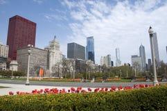 Frühling in Chicago Stockbilder