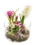 Frühling Deco Stockfoto