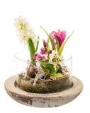 Frühling Deco Stockbild