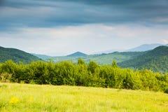 Frühling in den Bergen Kontrastfarben Sonnige Lichtung und blaue Berge Stockfotografie